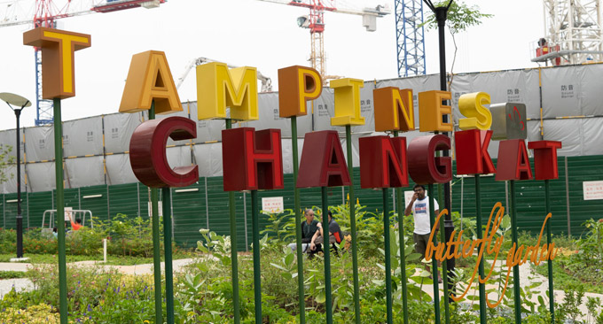 An Eco-friendly Butterfly Paradise in the Heartland of Tampines